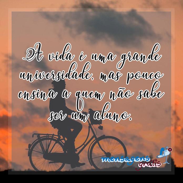 Frases de Augusto Cury sobre a Vida