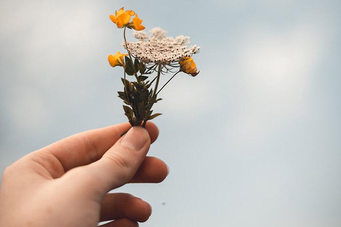 Mensagem De Conforto Para Quem Perdeu Pessoas Queridas Mensagens