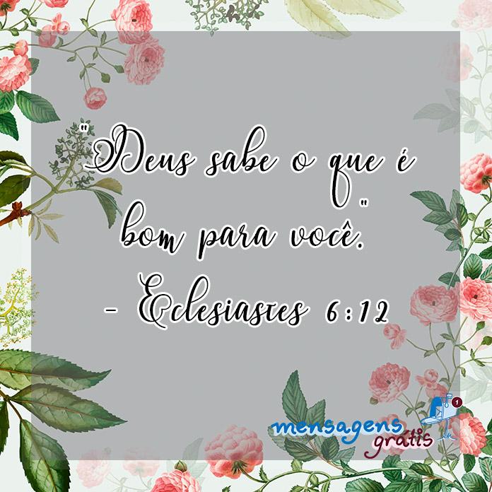 Eclesiastes 6:12